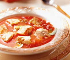 Tex-Mex Chicken Vegetable Soup