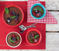 Summer Berry Chocolate Pudding