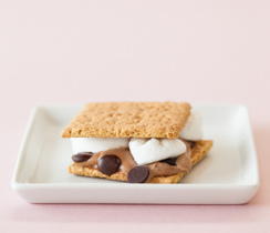 Mocha Cheese Ball Celebration S'Mores